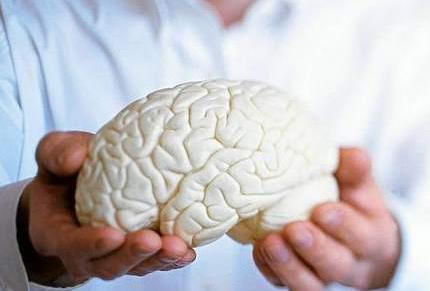 Чистим сосуды головного мозга